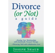 Ten Questions for Joe Shaub, Author of Divorce (or Not) A Guide